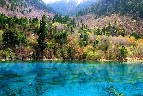 Jiuzhaigou Five Flower Lake, photo by B_cool