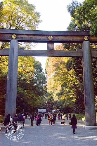 Meiji Jingu Torii (Meiji Shrine Gate)