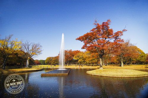 Yoyogi Park Fountain